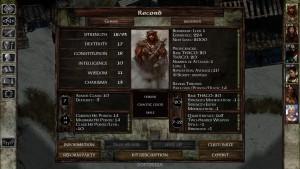 Icewind-Dale-Enhanced-Edition-PC-467531-9